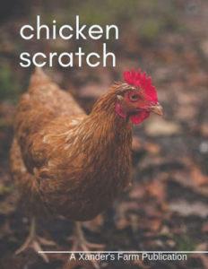 chicken scratch magazine homeschool submissions teens