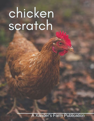 chicken scratch magazine homeschool submissions teens